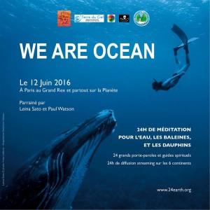 we are ocean